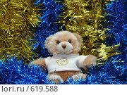 Купить «Новогодняя игрушка», фото № 619588, снято 23 ноября 2008 г. (c) Владимир Соловьев / Фотобанк Лори