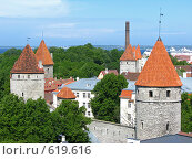 Купить «Крепостная стена с башнями в Таллине.Вид со смотровой площадки Вышгорода.», фото № 619616, снято 11 июня 2008 г. (c) Алла Виноградова / Фотобанк Лори
