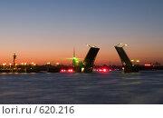 Купить «Дворцовый мост в белые ночи», фото № 620216, снято 23 июня 2007 г. (c) Светлана Щекина / Фотобанк Лори