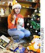 Купить «Подготовка к году Тигра», фото № 620280, снято 16 декабря 2008 г. (c) Олеся Сарычева / Фотобанк Лори