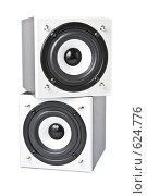 Купить «Две звуковые колонки на белом фоне», фото № 624776, снято 19 декабря 2008 г. (c) Баевский Дмитрий / Фотобанк Лори