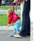 Малыш. Стоковое фото, фотограф Катерина Белякина / Фотобанк Лори