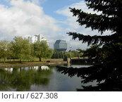 Библиотека (2007 год). Стоковое фото, фотограф Андрей Притуляк / Фотобанк Лори
