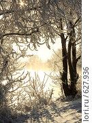 Купить «Окно с зимы», фото № 627936, снято 19 декабря 2008 г. (c) Зудин Виталий Владимирович / Фотобанк Лори