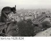 Купить «Взирая на город», фото № 628824, снято 6 ноября 2008 г. (c) Анна Янкун / Фотобанк Лори