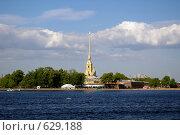 Петропавловская крепость (2008 год). Стоковое фото, фотограф Илларионов Андрей / Фотобанк Лори