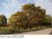Осенний пейзаж. Стоковое фото, фотограф Сенченко Надежда / Фотобанк Лори
