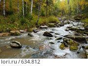 Горный Алтай. Небольшая горная река. Стоковое фото, фотограф Юрий Бульший / Фотобанк Лори