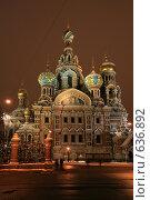 Купить «Санкт-Петербург. Собор Спаса на Крови», фото № 636892, снято 24 декабря 2008 г. (c) Александр Секретарев / Фотобанк Лори