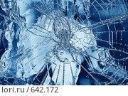 Паук в ледяной паутине. Стоковое фото, фотограф Владимир Цветов / Фотобанк Лори