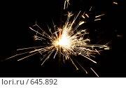 Купить «Бенгальский огонек», фото № 645892, снято 31 декабря 2008 г. (c) Вальченко Любовь / Фотобанк Лори