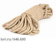 Купить «Верёвка», фото № 646600, снято 8 января 2009 г. (c) Игорь Веснинов / Фотобанк Лори
