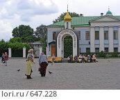 Купить «Москва. Свято-Данилов монастырь», эксклюзивное фото № 647228, снято 28 июня 2008 г. (c) lana1501 / Фотобанк Лори