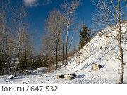 Купить «Зимний день», фото № 647532, снято 3 января 2009 г. (c) Игорь Момот / Фотобанк Лори