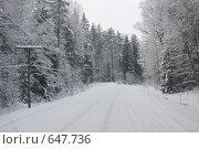 Купить «Зимняя дорога», эксклюзивное фото № 647736, снято 4 января 2009 г. (c) Наталия Шевченко / Фотобанк Лори