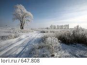 Купить «Зимняя дорога и  деревья покрытые инеем», фото № 647808, снято 4 января 2009 г. (c) Виктор Филиппович Погонцев / Фотобанк Лори