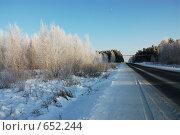 Зимняя дорога. Стоковое фото, фотограф Стрельцова Екатерина / Фотобанк Лори