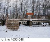 Купить «Станция Луговая, Московская область», фото № 653048, снято 3 января 2009 г. (c) Юлия Дашкова / Фотобанк Лори