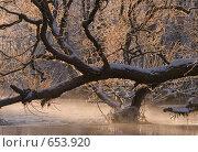 По над  зимней рекой. Стоковое фото, фотограф Андрей Явнашан / Фотобанк Лори