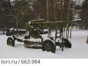 Купить «Снегири. Военно-исторический музей. Зенитная пушка», фото № 663984, снято 8 января 2009 г. (c) Елена Прокопова / Фотобанк Лори