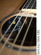 Купить «Фрагмент гитары шестиструнной», фото № 664180, снято 10 мая 2008 г. (c) Аlexander Reshetnik / Фотобанк Лори