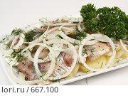 Купить «Селедочка с картошкой», фото № 667100, снято 20 апреля 2008 г. (c) Дмитрий Натарин / Фотобанк Лори
