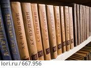 Книги. Пушкин (2009 год). Редакционное фото, фотограф Андрей Сверкунов / Фотобанк Лори