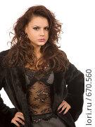 Купить «Сексуальная девушка в шубе», фото № 670560, снято 29 ноября 2008 г. (c) Валентин Мосичев / Фотобанк Лори