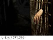 Купить «Рука, просунутая через решетку», фото № 671376, снято 13 июля 2008 г. (c) Raev Denis / Фотобанк Лори