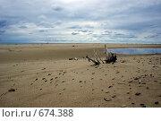 Купить «Пляж у поселка Янтарный, Калининградская область», фото № 674388, снято 31 августа 2007 г. (c) Елена Ликина / Фотобанк Лори