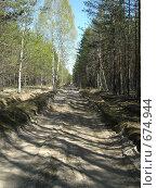 Лесная дорога. Стоковое фото, фотограф Евгений Степанов / Фотобанк Лори
