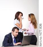 Купить «Коллеги: молодые бизнесмены в офисе», фото № 677836, снято 21 июля 2007 г. (c) Владимир Мельник / Фотобанк Лори
