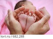 Купить «Ножки малыша в руках взрослого», фото № 682288, снято 16 марта 2004 г. (c) Ермилова Арина / Фотобанк Лори
