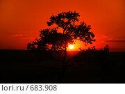 Австралийский закат. Стоковое фото, фотограф Евгений Ильдутов / Фотобанк Лори