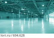 Купить «Пустой склад», фото № 694628, снято 23 февраля 2008 г. (c) Литова Наталья / Фотобанк Лори