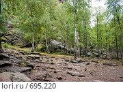 Купить «Территория государственного природного заповедника «Столбы»», фото № 695220, снято 5 сентября 2008 г. (c) Parmenov Pavel / Фотобанк Лори