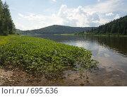Купить «Пейзаж на реке Вишера», фото № 695636, снято 12 июля 2008 г. (c) Максим Стриганов / Фотобанк Лори