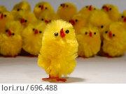 Купить «Хор пасхальных цыплят и солист», фото № 696488, снято 20 марта 2007 г. (c) Марианна Меликсетян / Фотобанк Лори