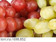 Купить «Фон из свежего красного и зеленого винограда с каплями воды», фото № 698852, снято 24 августа 2008 г. (c) Мельников Дмитрий / Фотобанк Лори