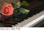 Купить «Роза на фортепиано», фото № 702716, снято 14 февраля 2009 г. (c) Сергей Плюснин / Фотобанк Лори