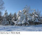 Зимний пейзаж. Стоковое фото, фотограф Голов Евгений Эдуардович / Фотобанк Лори