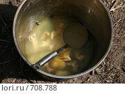 Купить «Котелок с ухой из стерляди», фото № 708788, снято 18 мая 2007 г. (c) Gagara / Фотобанк Лори