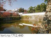 Купить «Замок Белой Цапли Сиросагидзё. Япония», фото № 712440, снято 24 ноября 2007 г. (c) Просенкова Светлана / Фотобанк Лори