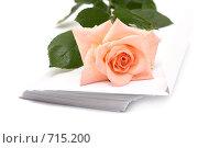 Купить «Роза с каплями воды на конвертах», фото № 715200, снято 29 июня 2008 г. (c) Cветлана Гладкова / Фотобанк Лори
