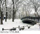 В летнем парке. Стоковое фото, фотограф Голов Евгений Эдуардович / Фотобанк Лори