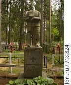Купить «Памятник финскому герою на старом карельском кладбище», фото № 718824, снято 10 июня 2006 г. (c) Алина Анохина / Фотобанк Лори