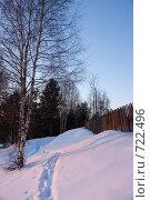 Купить «Тропинка зимой между деревоми забором», фото № 722496, снято 22 февраля 2009 г. (c) Шахов Андрей / Фотобанк Лори