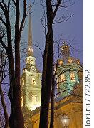 Купить «Санкт- Петербург. Петропавловская крепость. Шпиль Петропавловского собора», фото № 722852, снято 14 декабря 2008 г. (c) Румянцева Наталия / Фотобанк Лори