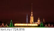 Купить «Санкт-Петербург. Вид на Петропавловскую крепость и Телебашню», фото № 724816, снято 9 января 2009 г. (c) Дамир / Фотобанк Лори
