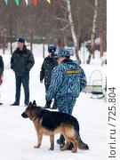 Купить «Кинолог с собакой на культурно-массовом мероприятии», эксклюзивное фото № 725804, снято 3 мая 2006 г. (c) Сайганов Александр / Фотобанк Лори